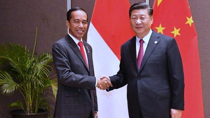 Berbincang dengan Jokowi, Presiden Xi Jinping: Indonesia Pasti Dapat Atasi Wabah Covid-19